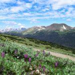 Hiking Trail Near Estes Park