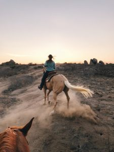 horseback riding estes park rams horn village resort